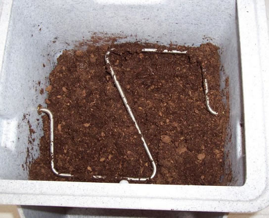 peat moss in toilet compartment smaller file